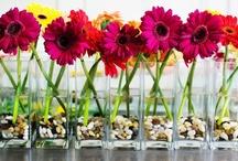 Gerbera Daisy Wedding- pink, orange, yellow, white, red