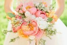 Flowers, Bouquets etc