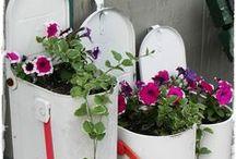 Gardening /  Gardening Ideas - Vegetable Gardening - Flower Gardening - Gardening Layout - Gardening Design - Fairy Gardening - DIY Gardening - Gardening for Beginners - Herb Gardening - Container Gardening - Raised Gardening - Backyard Gardening - Box Gardening