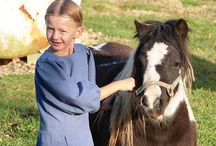 Amish Stuff / by LibbyJaine