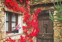 Stagioni: autunno