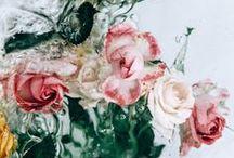 C a l l M e F l o w e r / Flowers, flowers and more flowers.