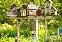 tajemniczy ogród/the secret garden