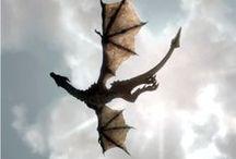 ● Dragon