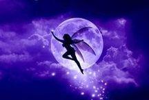 ● Fairy
