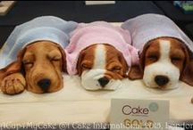 Animal cakes, / oblíbená zvířátka
