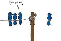 Just funny  / by Karen James