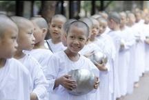 Buddhist Women / by Danie Becknell
