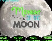 Midnight on the Moon: Magic Tree House / This resource is all about the Magic Tree House novel, Midnight on the Moon. This is a NO PREP (ELA) resource that has color anchor charts. It covers phonics, grammar, and reading skills for grades 1-3.
