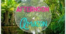 Afternoon on the Amazon: Magic Tree House / Novel study and NO PREP (ELA) for the Magic Tree House novel, Afternoon on the Amazon. These resources focus on comprehension, vocabulary, phonics, grammar, and spelling skills for grades 1-3. Magic Tree House, Products, Book