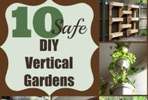 Landscaping & Gardening Tips/Projects / From landscape lighting to design, improve the curb appeal of your home instantly with a few simple upgrades. Plus, easy maintenance tips and fun garden ideas.