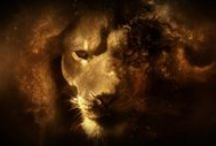 Leos and Lions - Heart's Bravery