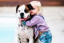 Kids & Pets / Showcasing the human-animal bond between kids and their pets. Sharing heartwarming photos of dogs and cats showing unconditional love and patience to their favorite little humans.  / by Pets Best Pet Insurance Services, LLC.