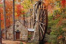 Architecture: Exterior & Gardens