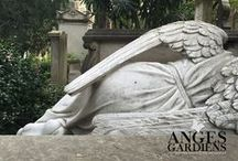 ☼ AngesGardiens.net ☼ / Toutes les photos d'anges et d'archanges en provenance de la galerie d'images du site angesgardiens.net. Vous vous intéressez aux anges, vous vous questionnez à leur sujet? Une visite sur le site vous sera utile.  www.angesgardiens.net   #AngesGardiens #Ange
