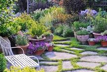 decks, patio, back yard, gardens / by Brenda Ortega