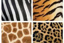 Textuur / Texturen voor BeVo
