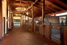 Lovely horse stable