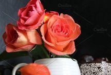 Fall   Herbst / Autumn, fall, decorations, diys, ideas for table decorating, pumpkin, Indian summer   Herbstdeko, Tischdekoration, Deko, Kürbisse, Laub, Halloween decorations