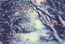 Winter ❤️ Zima
