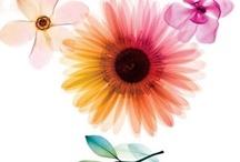 *Flower art*