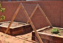 Fences, Walls, Gates, Garden Trellises / by Patty Davenport