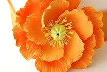 fleurs pate à sucre / by vanessa rebours