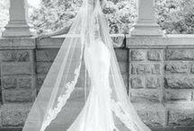 Wedding / by Rosa Maiolica