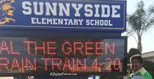 """This and That / This board is sponsored by """"Al the Green Rain Train"""" a children's picture book, an environmental book for children and a reminder to all"""