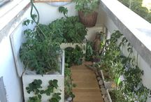 Gardening in small space, balcony / Want to have you green garden on balcony? Here is an easy and cheap way how to do it!