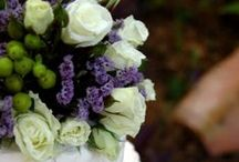Food and Cakes / Special Food and Cakes for your Charleston SC Wedding, Vow Renewal or Elopement.