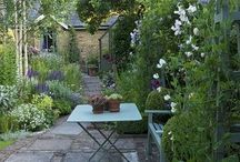 Accessories and flowers for the garden / I am quite a keen gardener when I have time. Particularly like Topiary,Roses,White and Blue Planting schemes with greyish green foliage.In my cottage garden the soil is free draining sandy loam and everything that is pink wants to grow there!!!!! Please like me on Facebook for further Interior design Inspiration. / by Alison Dodds
