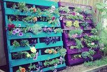 Garden Inspiration / Gardens that inspire us.