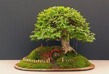 All things fairies, elfish & miniatures / by myzig