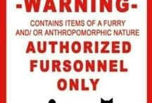 All things Furry! / Furrys! Ask to join ^-^ and please keep it appropriate! Role play, chat, and post furry pins!
