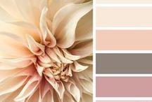 Paletas de colores / Inspiración <3