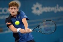 David Goffin / Tennisplaza België selecteert voor u de beste foto's & video's van David Goffin
