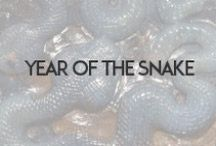 2013: The Year of the Snake