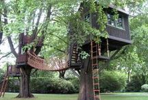 Tree Houses, Forts and Playgrounds / by Miranda Jane