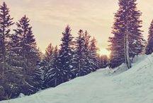 •winter•