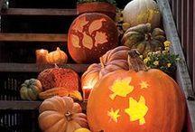 halloween / by Cory