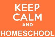 Homeschool and Kiddo Ideas