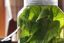 Natural Remedies / by Julie Rotarius