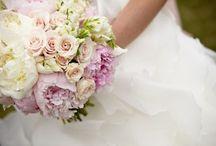 Bridal / by Tracie Vanderbeck
