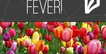 Spring Fever! / Spring crafts, activities, recipes, printables, and more!