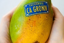 Organic California / Organic foods are foods that are produced using methods that do not involve modern synthetic inputs such as synthetic pesticides and chemical fertilizers. Organic foods are also not processed using irradiation, industrial solvents, or chemical food additives.