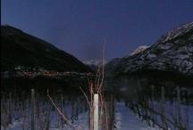 Vino del Ghiaccio,Ice Wine,Vin de Glace- Part 3 / Casa Ronsil Chiomonte (TO) ITALY