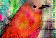 Art pájaros