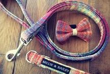 M & B Tweed Dog Accessories / A Board to Showcase the Luxury Tweed Accessories Crafted by Millie & Bailey.