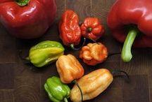 Art peppers